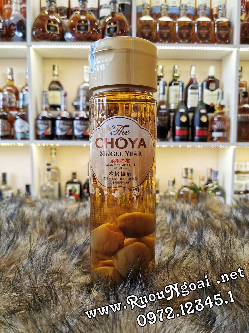 choya single year 1